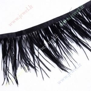 http://www.jewel.lt/10274-thickbox/strucio-plunksnu-dekoratyvine-juosta-juoda-sp-apie-80-100-mm-1-m.jpg