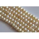 Perlai upiniai ( šampaninė spalva ), apie 5,5x6,5x7 mm, 1 juosta ( apie 36 cm.)